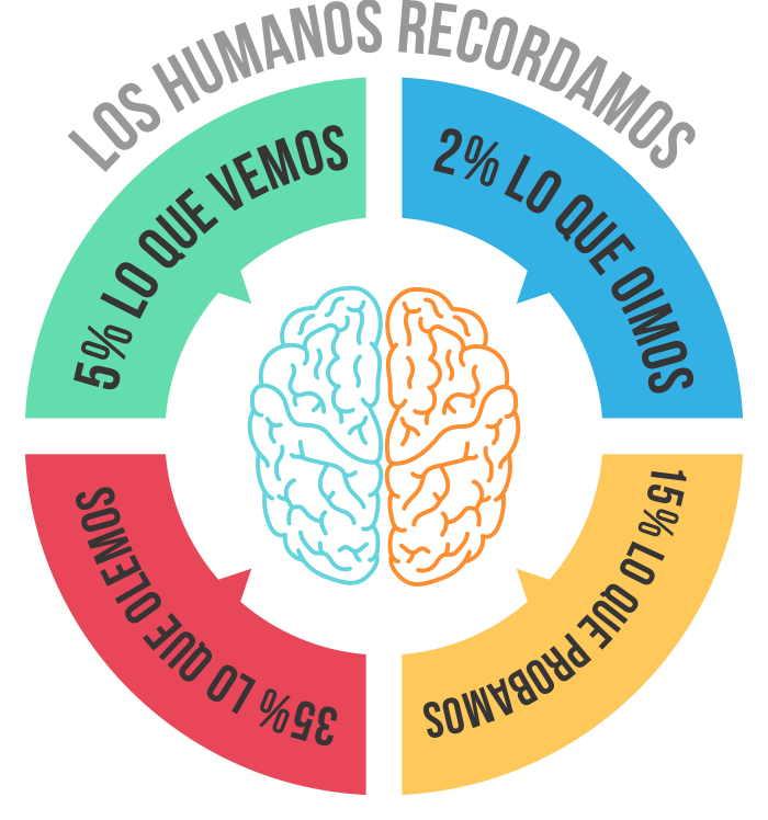 infografia marketing sensorial